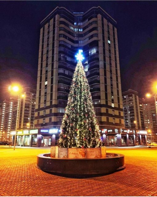 Воронеж новогодняя елка