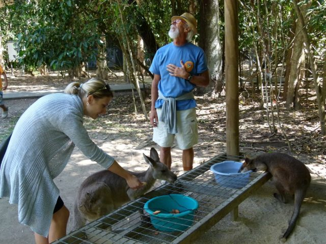 кормит крокодилов в Австралии
