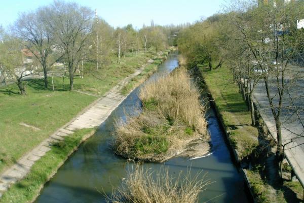 русло реки Бык очистят