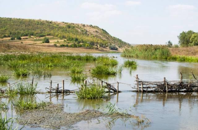 Эколог: В Криулянах умирает река