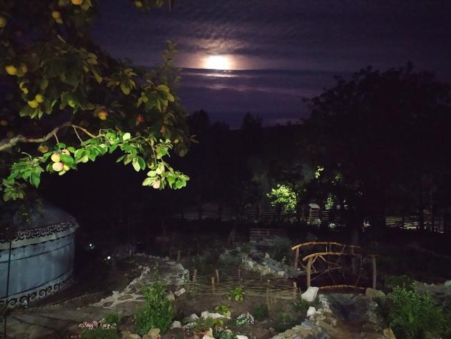 юрта, вид ночью