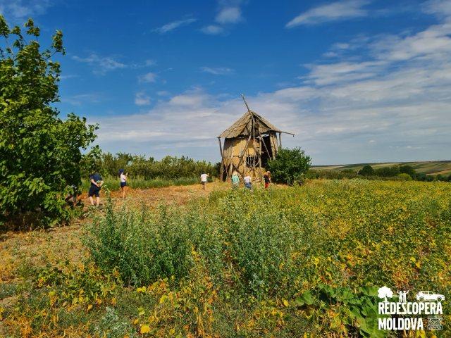 Потомок голландцев -  ветряная мельница в селе Чернолеука