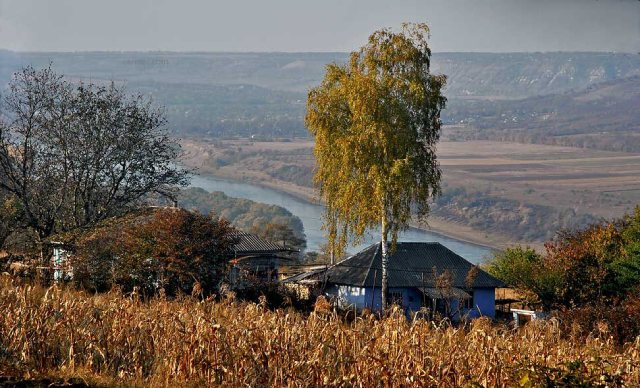 осень, фотографии Олега Канеева