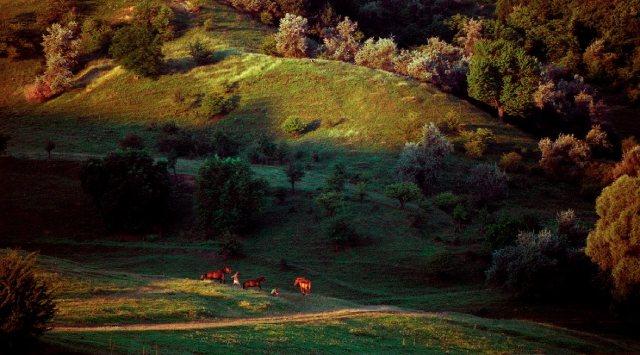 фото осенней Молдовы от Олега Канеева