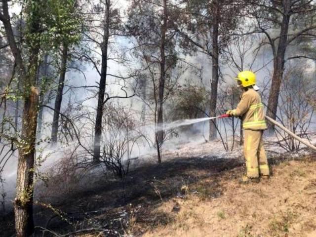 За выходные в Молдове ликвидировали 53 пожара