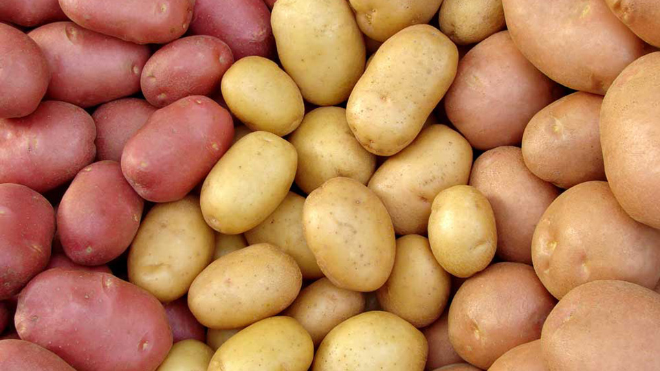 На молдавских рынках дешевеет белорусский картофель