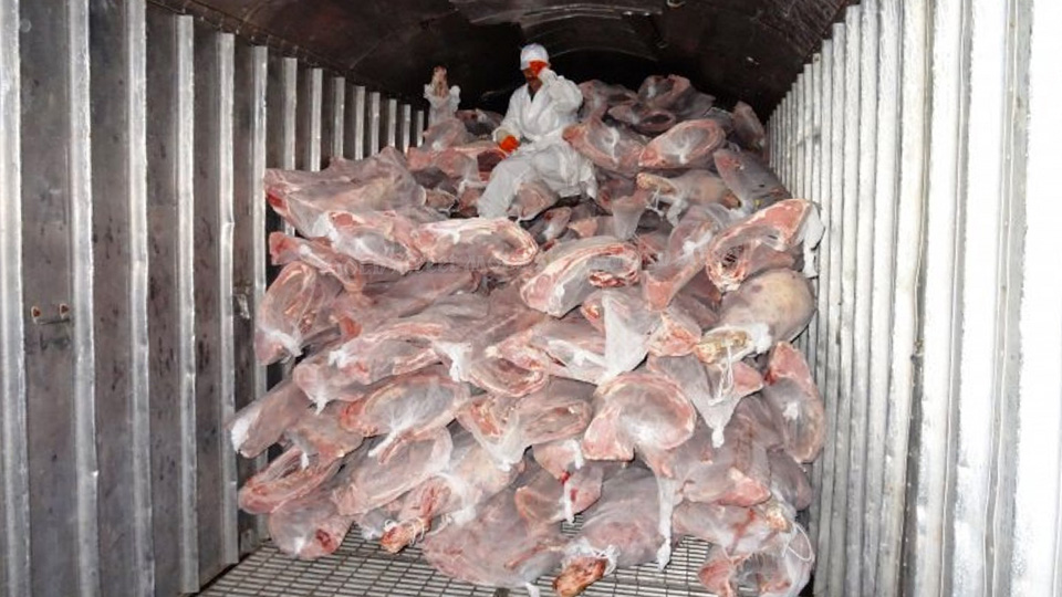 Тонны просроченного мяса и рыбы хранятся на таможенных складах
