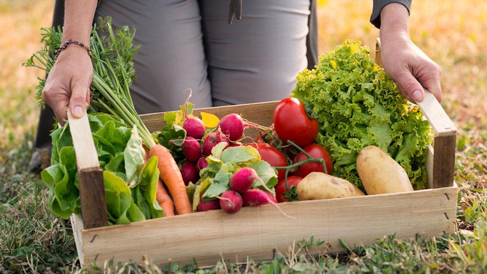 В этом году цены на органические продукты значительно снизились.