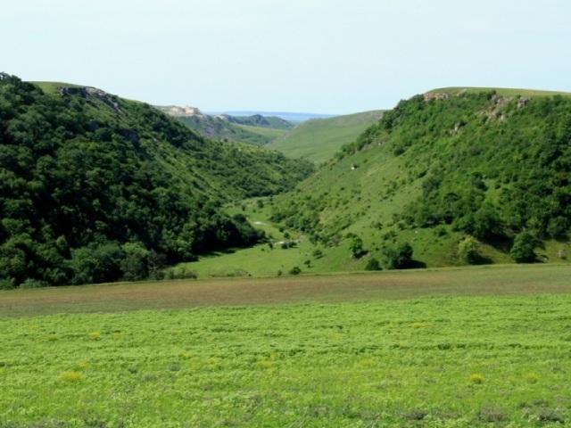 Володенское ущелье находится над долиной реки Раковец (Единецкий район).