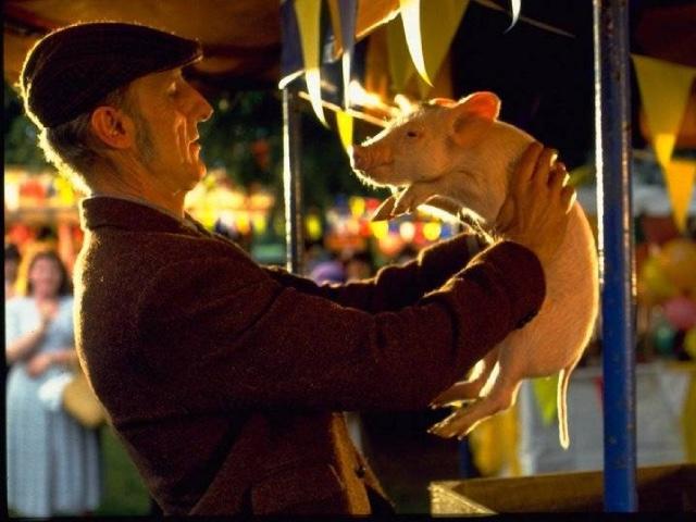 Бейб, семейный фильм про животных