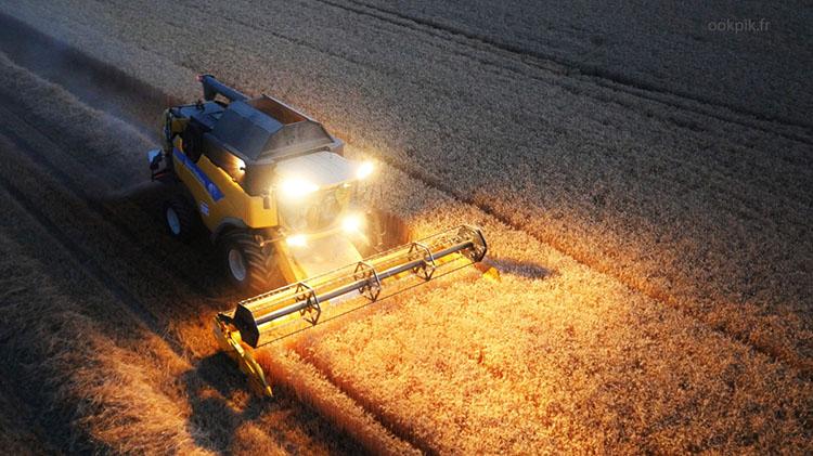 комбайн убирает урожай, Франция, фото с дрона