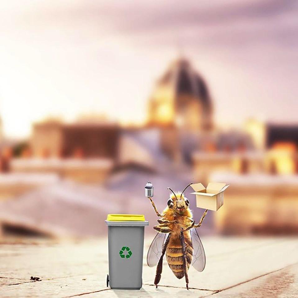 самая популярная пчела Instagram