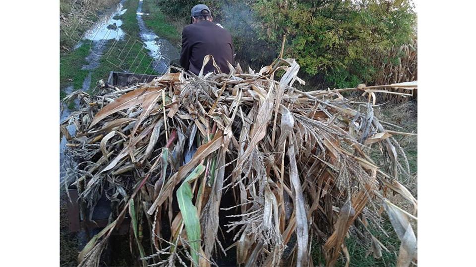 В телеге с кукурузой пограничники нашли 200 бутылок спирта