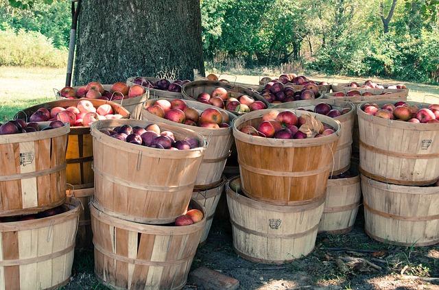 В Молдове дефицит местных яблок.