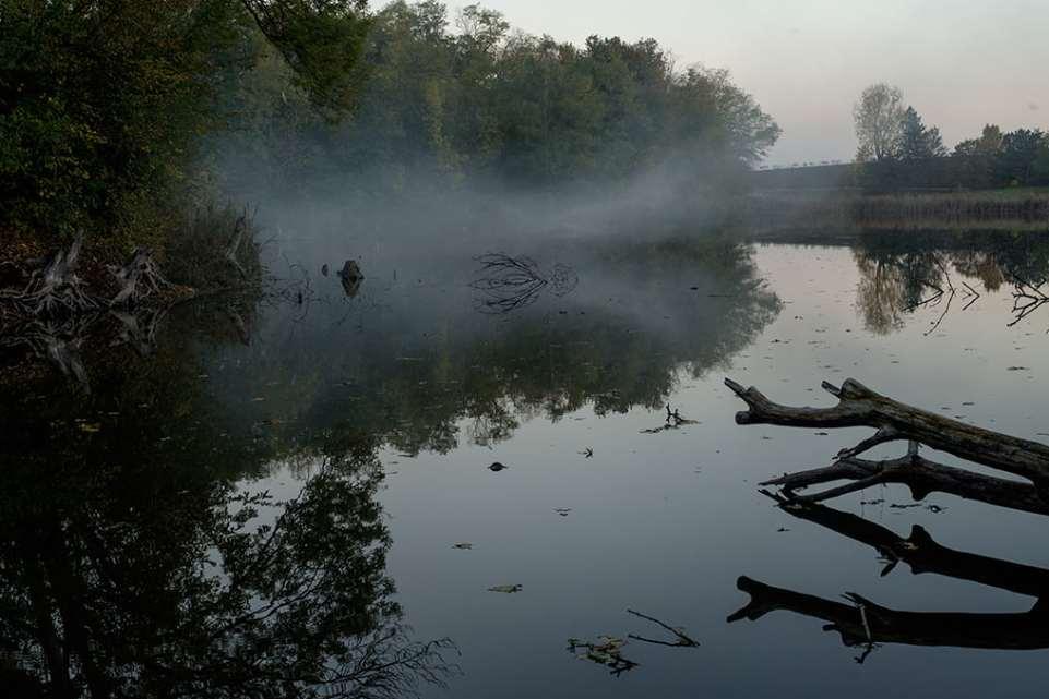 Поздняя осень в фотографиях Олега Канеева - 3