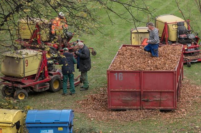 Чистые листья без мусора отвозят на очистную станцию. Там из них делают компост.
