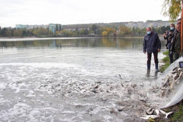 """В озеро парка """"Ла Извор"""" запустили мальков белого амура, новака и карпа."""