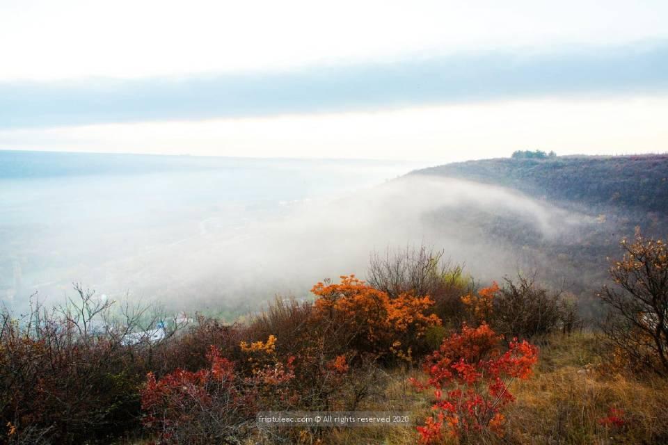 Осенняя Сахарна в фотографиях Романа Фриптуляк - 4