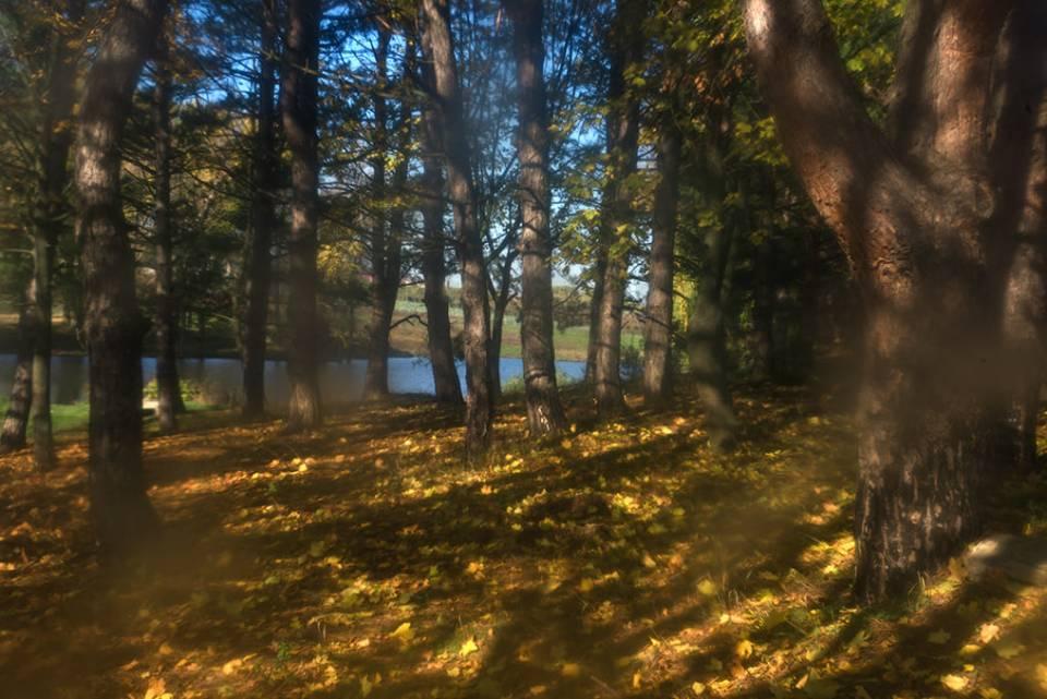 Поздняя осень в фотографиях Олега Канеева - 2