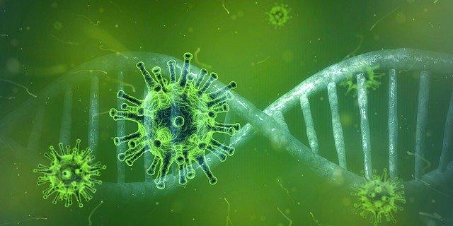 Что известно о новом варианте коронавируса, обнаруженном в Великобритании