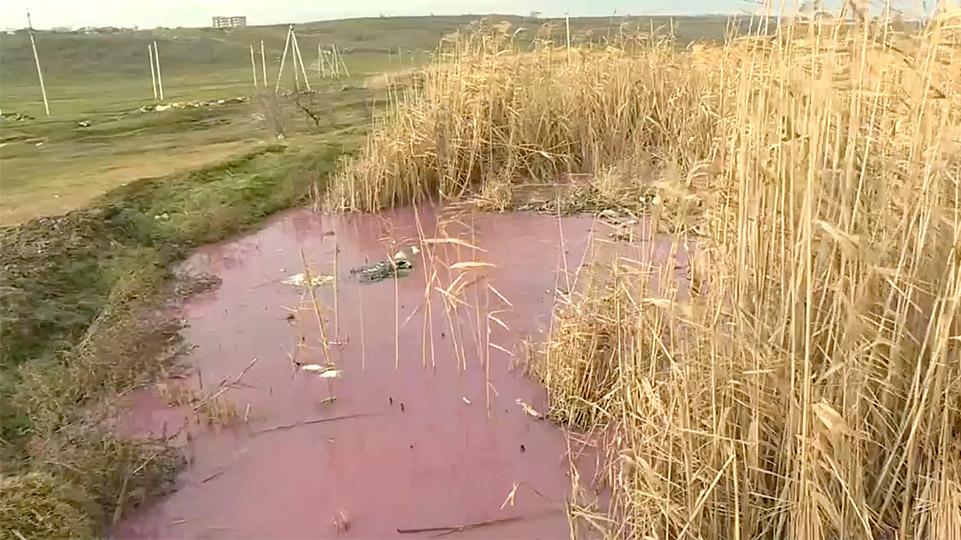 Мэр Комрата Сергей Анастасов заявил, что вода в реке порозовела из-за сброса отходов местного молокозавода