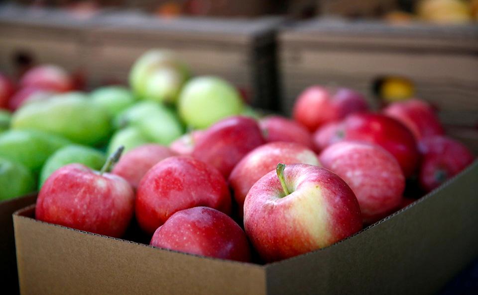 Местные яблоки – большая редкость в молдавских супермаркетах