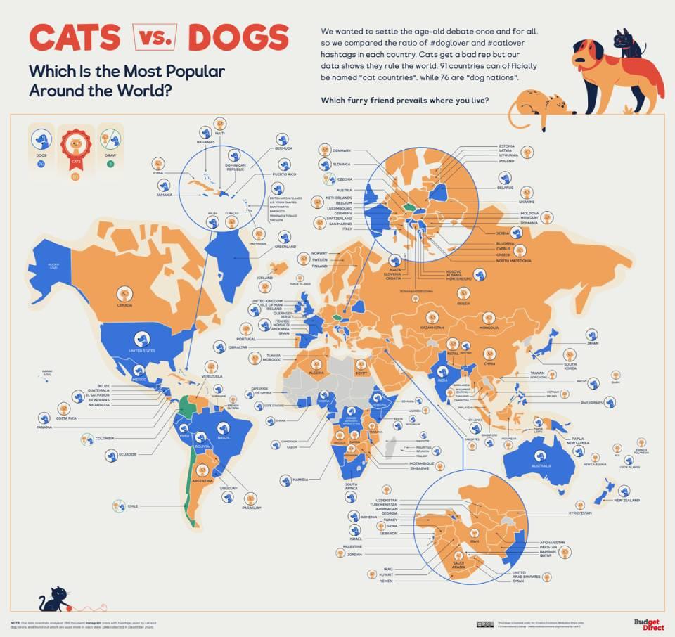 Кошки или собаки? Кого любят больше в разных уголках мира