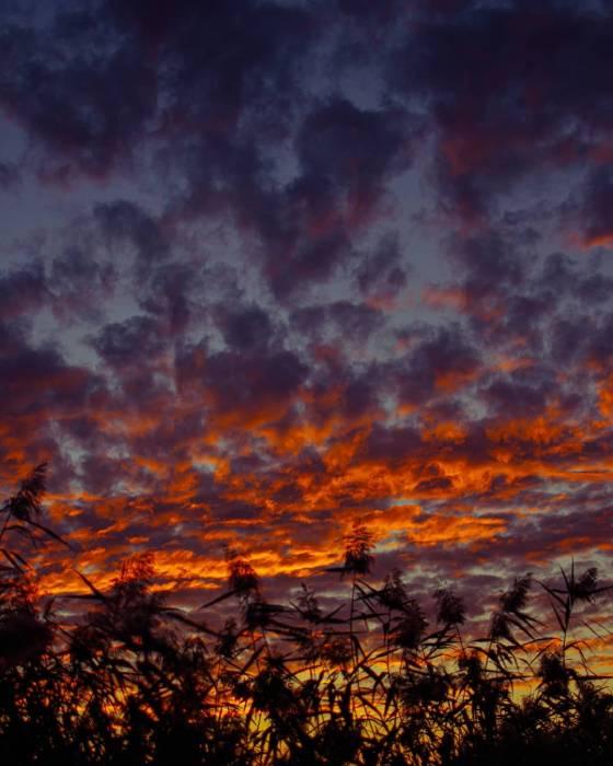 Закаты и рассветы в фотографиях Serge Ocean