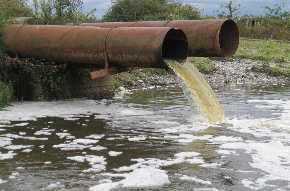 Огромное нефтяное пятно проплыло по Днестру