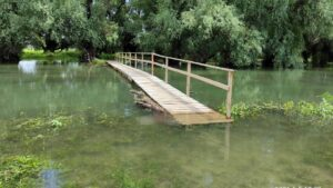 Озеро Белеу и Нижний Прут в фотографиях