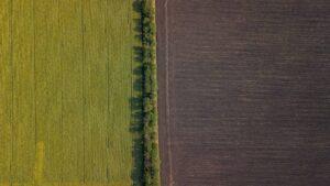 Молдова в объективе фотографа Василия Зелизный